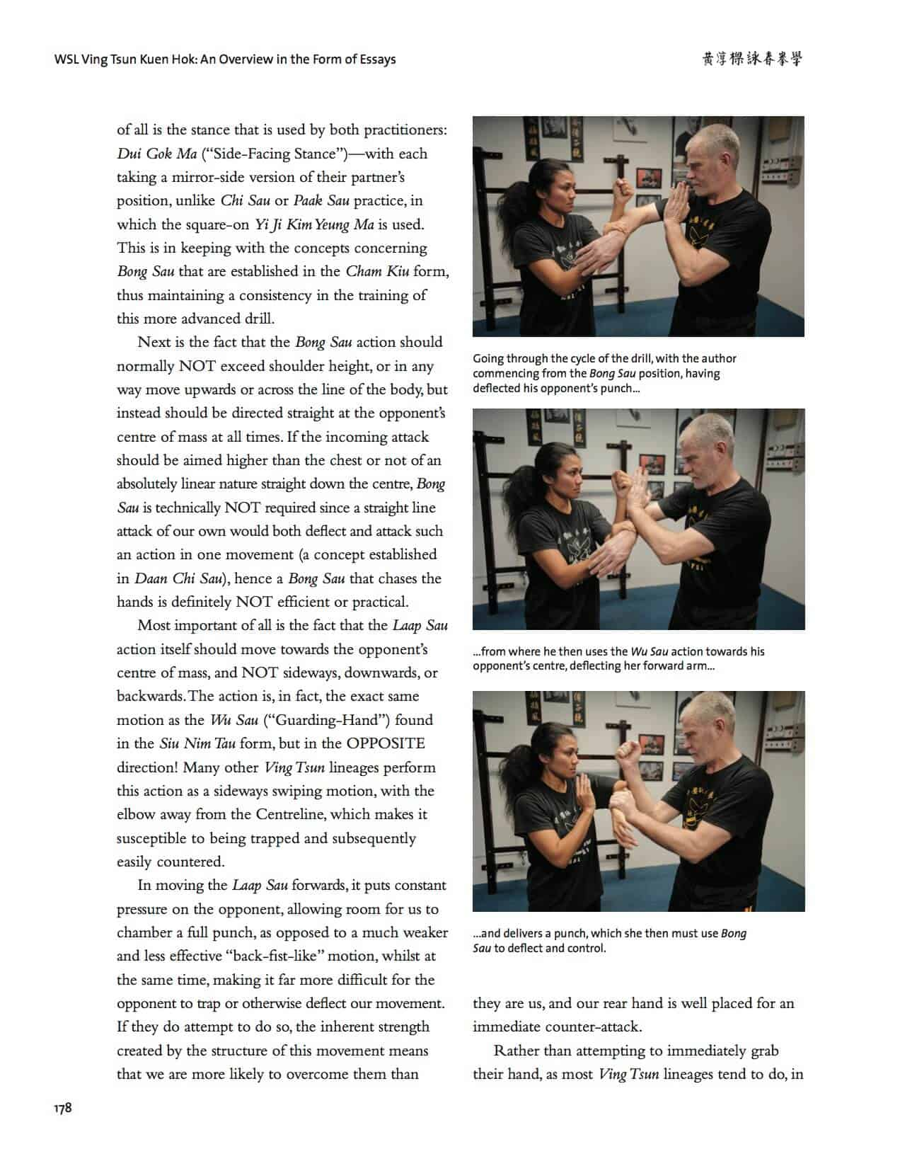 wsl ving tsun kuen hok an overview in the form of essays wing wsl ving tsun kuen hok an overview in the form of essays wing chun illustrated