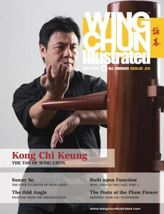 Wing Chun Illustrated Issue #29 Cover