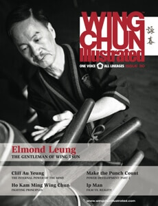 Wing Chun Illustrated Issue #30 Cover