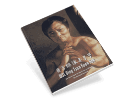 WSL Ving Tsun Kuen Hok An Overview in the Form of Essays